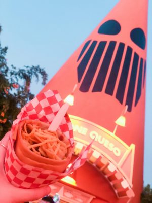 10 Must Do's at Disneyland for First-Timers - Cosy Cone