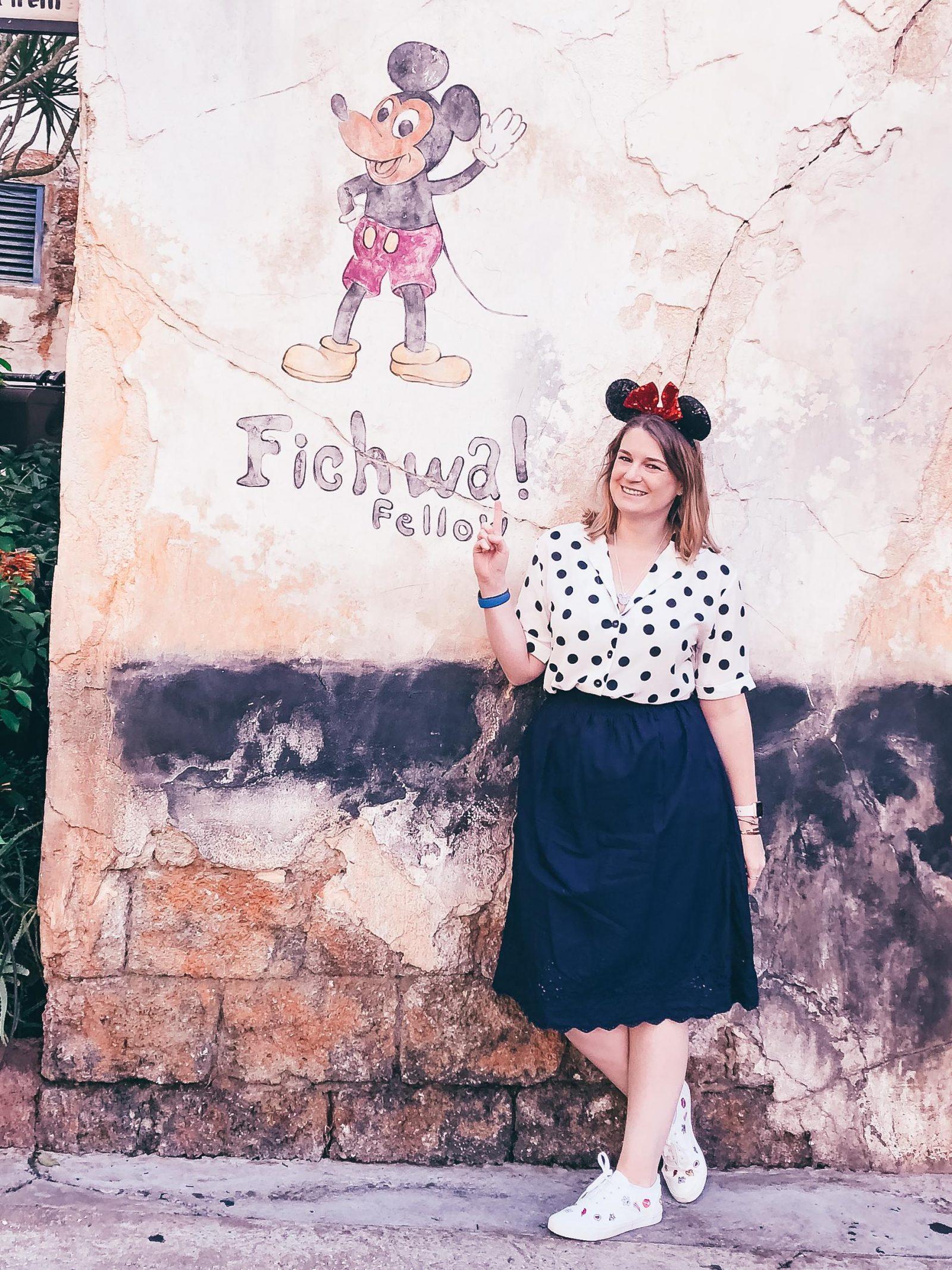Fichwa Fellow Wall - Disney World Instagram Walls
